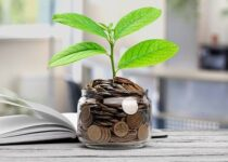 How to invest your money?