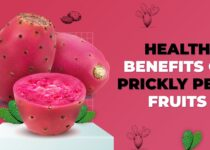 Benefits Of Prickly Pear, Genmedicare